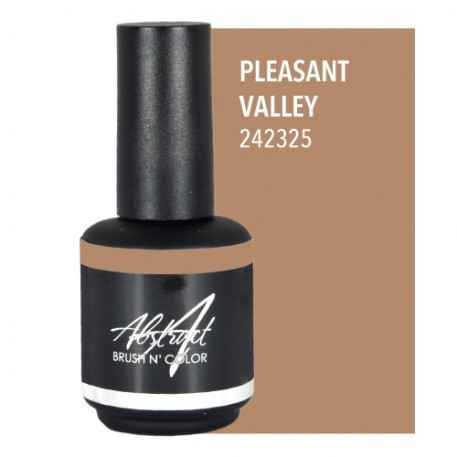 Pleasant Valley 15ml   Abstract Brush N Color
