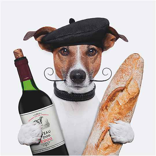 3D wenskaart french dog (x3)