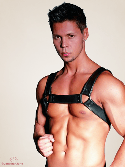 Leather Chest Harness