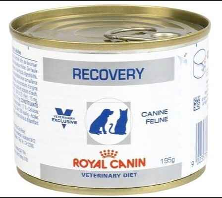 Royal Canin VDIET Hond / Kat Recovery - Natte voeding