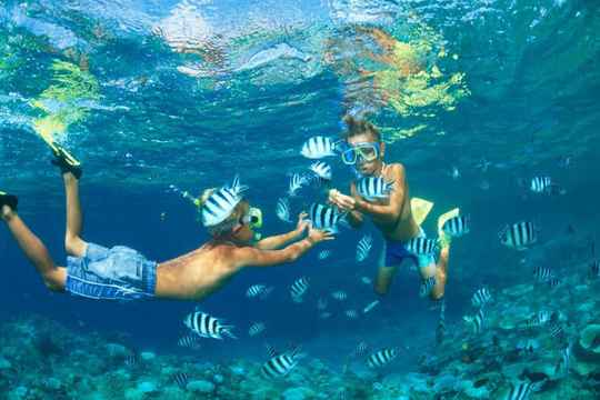 Snorkeling & chill (private tour)