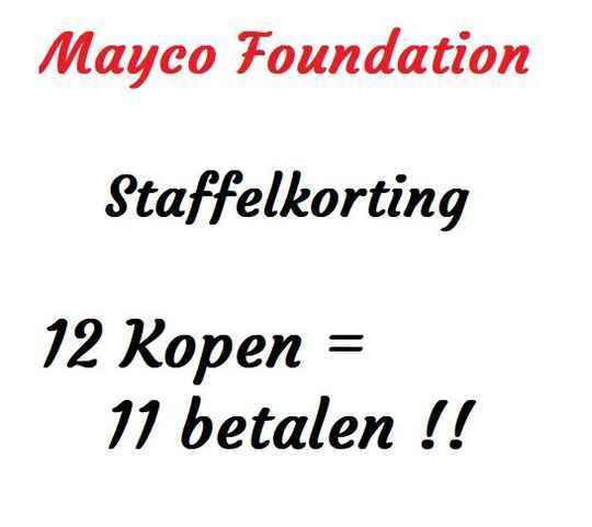 Foundation Staffel