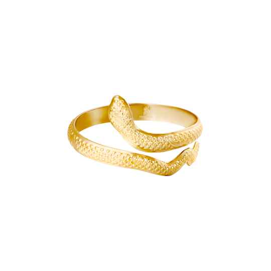Ring Slang - Goud