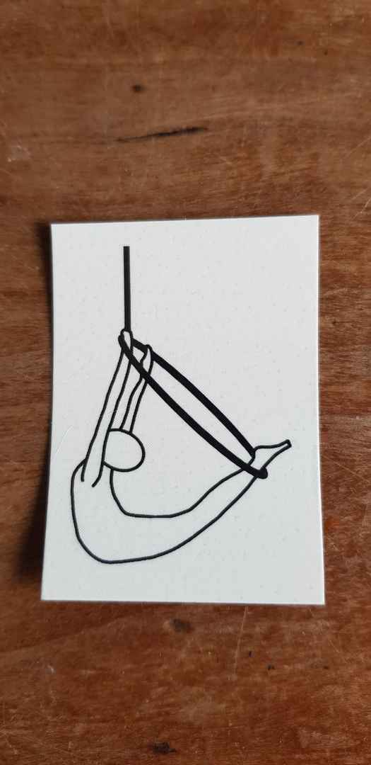 € 3,50 - Sticky Tattoo Aerial Hoop - Swallow