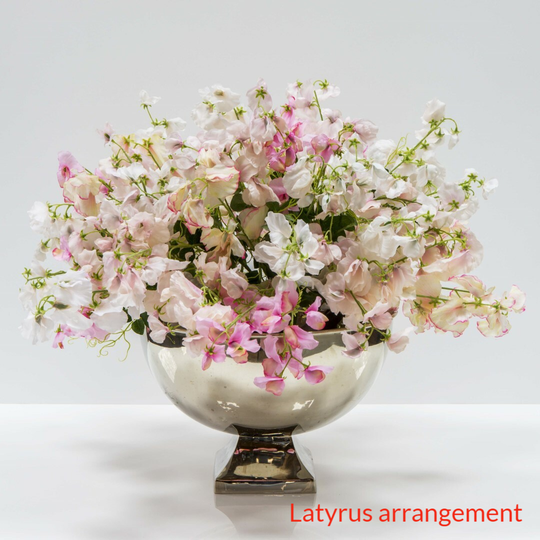 Plated bowl with latyrus arrangement