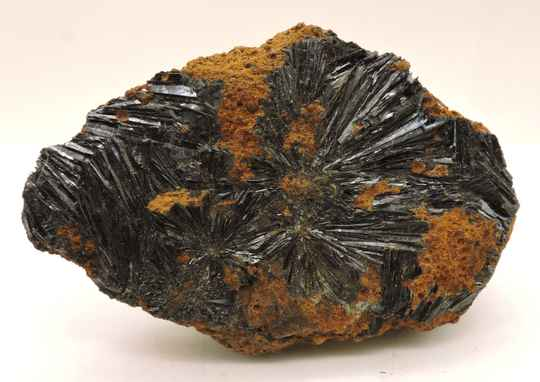 Vivianite from Russia - old find- cabinet size