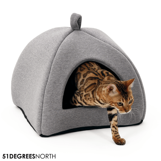 51 DEGREES NORTH MAND SWEATER CATHOUSE IGLO 40X40X36CM