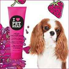 PET HEAD HIGH MAINTENANCE LEAVE-IN CONDITIONER 250ML