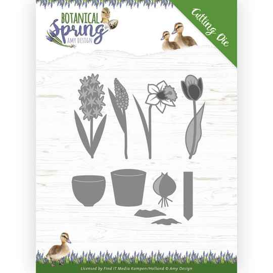 ADD10199 Bulbs and flowers -  Botanical Spring