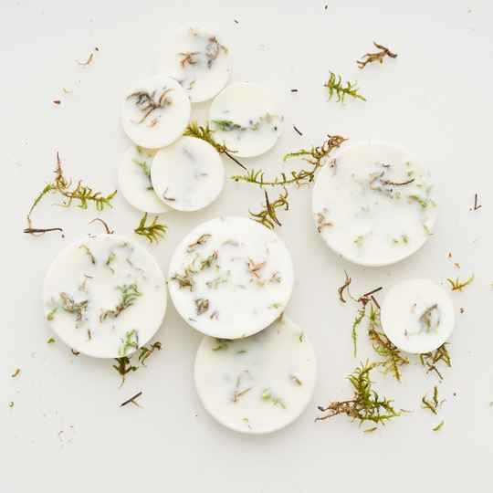 Moss scented soy wax rounds