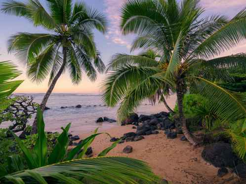 Fotobehang Hawaiian Dreams - 450 x 280 cm