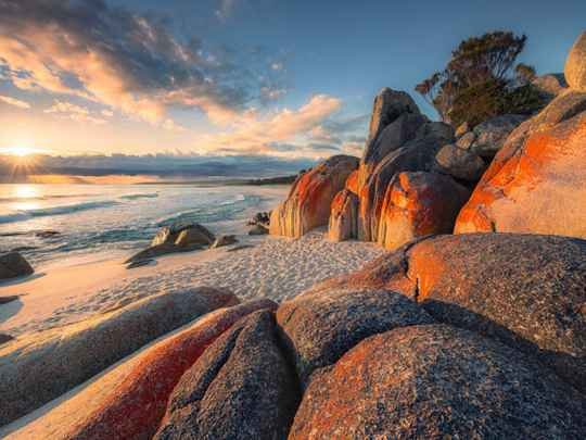 Fotobehang Bay of Fires - 400 x 280 cm