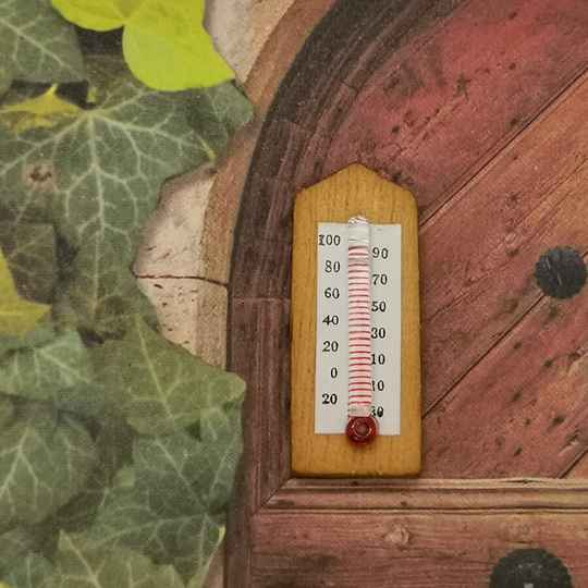 Thermometer 2.5 cm