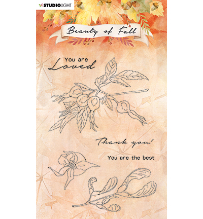 Studiolight, Clear Stamp, Beauty of Fall, Rose Hips- SL-BF-STAMP64