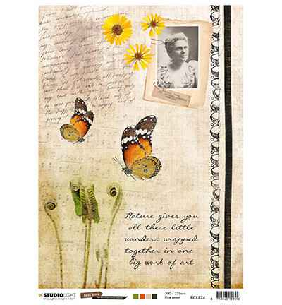 Studiolight, Rice Paper , Butterfly Collection nr. 24 - RICEJL24