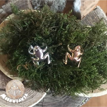 Frog adornment ~ Gold or Silver colored