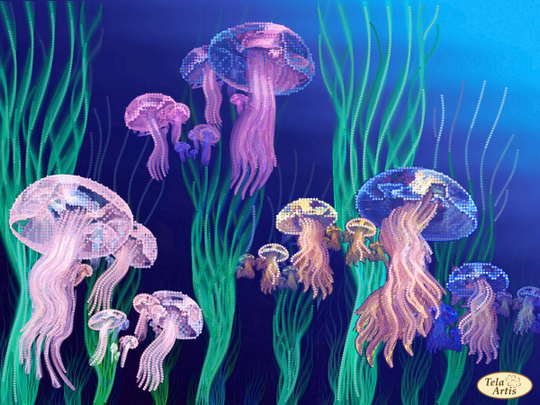 Jelly fishes