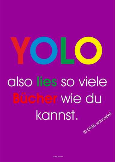 Poster 'YOLO'
