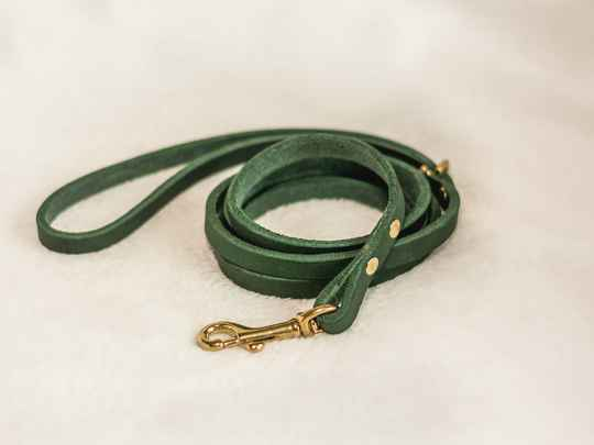 Forest - Luxury Leather Leash Green