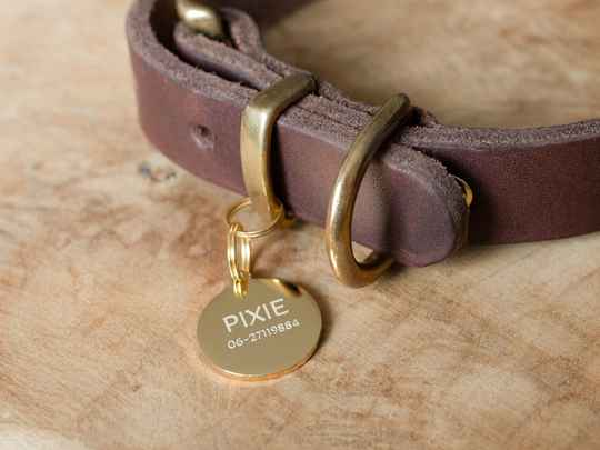 Luxury Engraved Stainless Steel ID tag Gold-colored