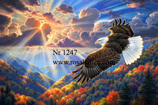 Nr 1247 Flying eagel