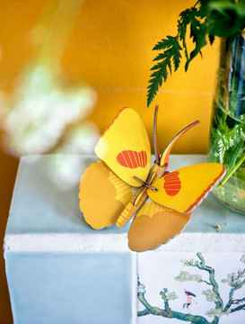 Studio Roof. Smal insects, yellow butterfly