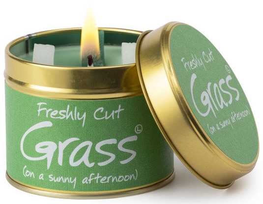 Freshly Cut Grass - on a Summer Afternoon