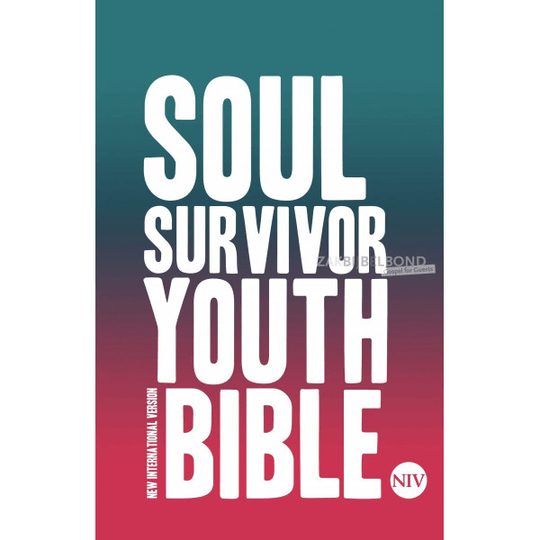 Engelse Bijbel NIV - Soul Surviver Youth Bible