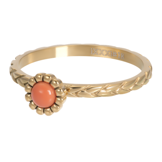 iXXXi Jewelry vulring 2mm Inspired Coral Goud
