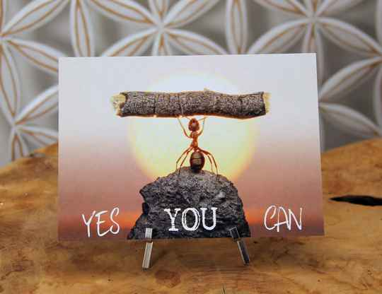 "Postkaart ""Yes you can"""
