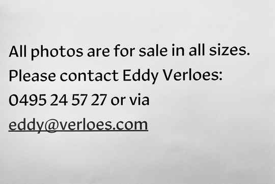 All my website's images are for sale