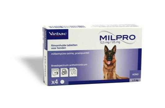 Milpro grote hond