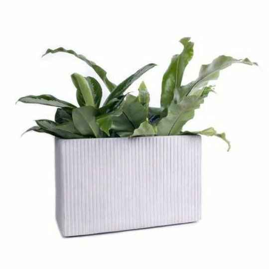 XLBoom - Mon Rectangular bloempot - medium