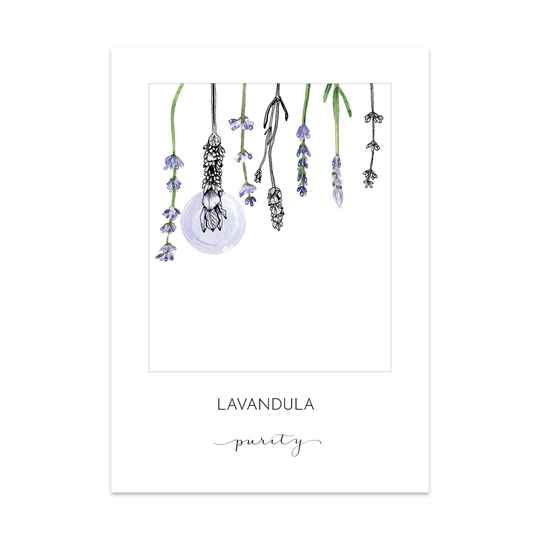 Lavendel Art Card