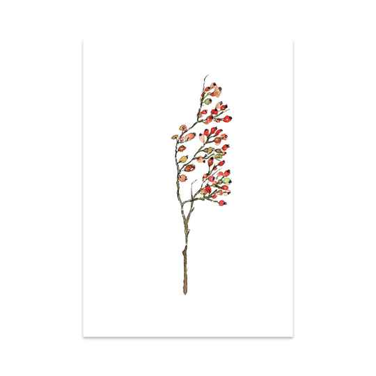 Rose Hips - Art Card