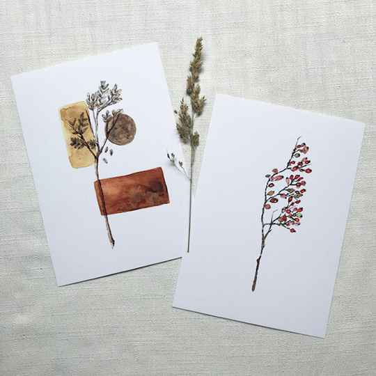 Dried Art Serie - A5 Art Cards
