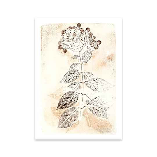 Hortensia - Art Card