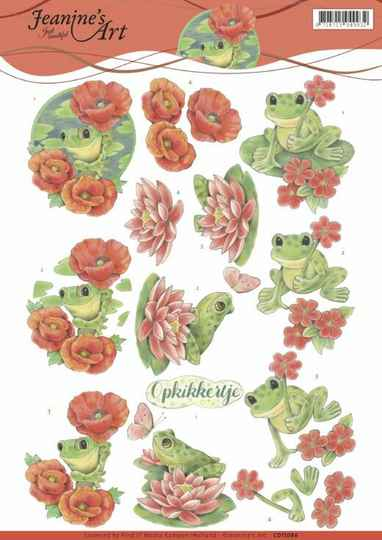 CD11086 frogs