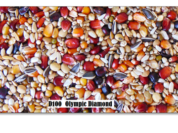 D100 Paloma Olympic Diamond 20kg