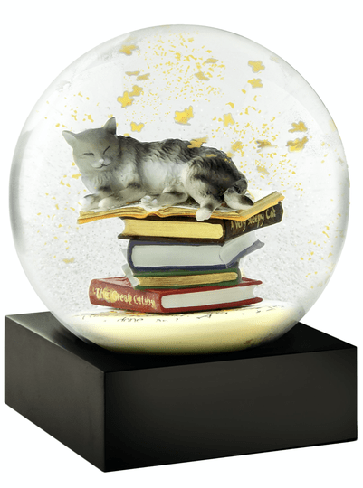 Cat on books - Snow Globes
