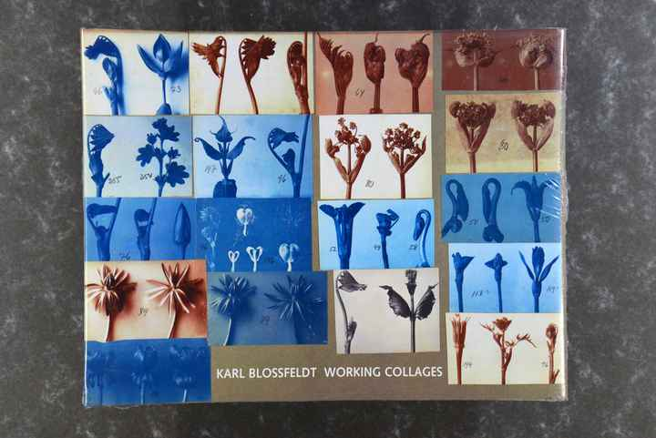 Blossfeldt, Karl  WORKING COLLAGES new in plastic rare!