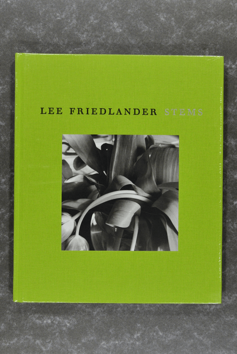 Friedlander,  Lee  -  Stems