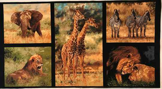 Animals 2 wild Panel 60x110cm