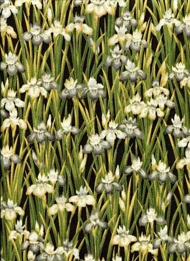Flowers Irisses with gold