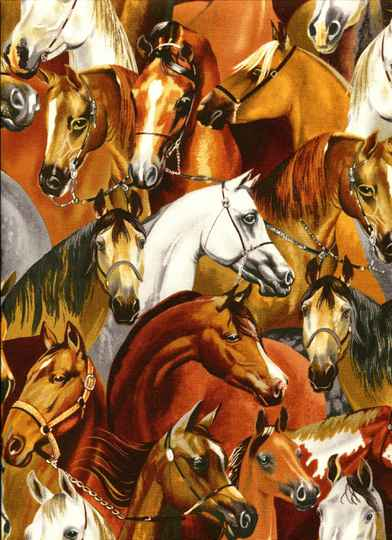 Animals Horses all over