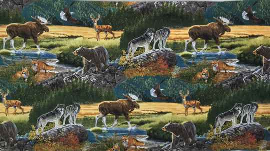 Animals Northern wild life 2 Panel 60x110cm