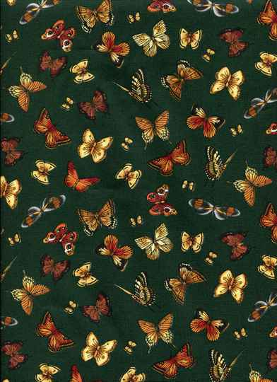 Insects butterflies on green
