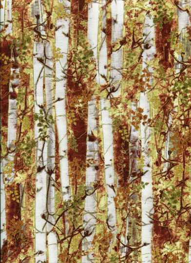 Nature Birchtrees with metallic