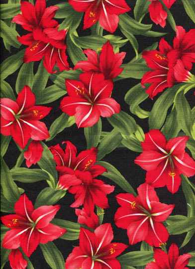 Flowers flo 12 long quarter 23x110cm