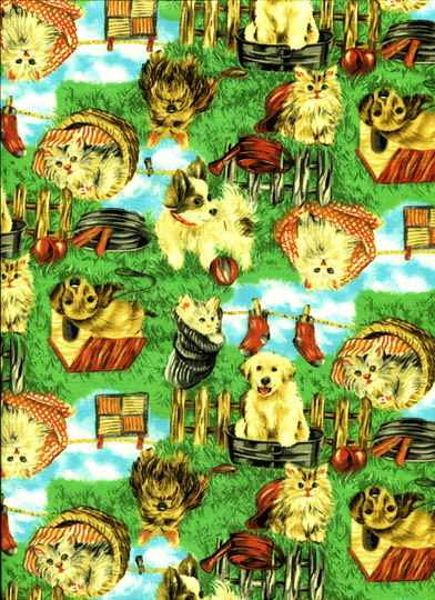 Cats and dogs basket cats and dogs